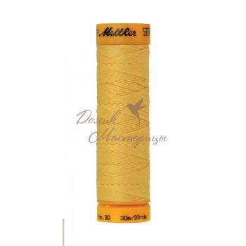 Отделочная нить Seralon 30м, 0120