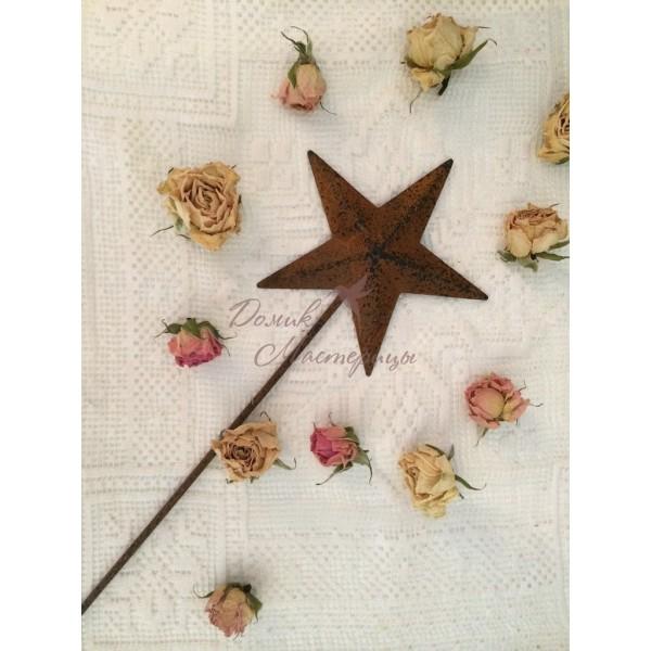 Палочка с звездой